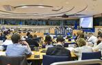 DROI/INTA joint hearing on Business and Human Rights in EU External Policies - Non-financial reporting and due diligence